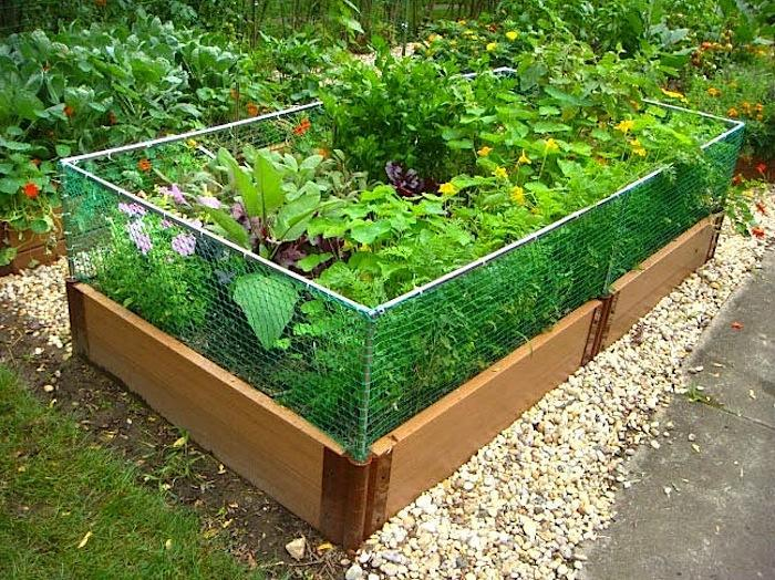 Designing A Vegetable Garden With Raised Beds raised garden bed ideascadagucom 700_raised Garden Bed Rabbit Fence Jpeg