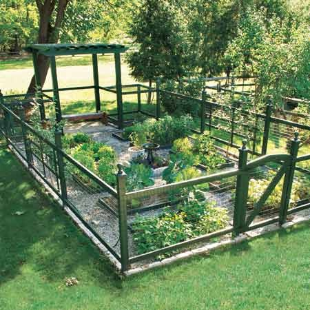 Delightful Enclosed Veggie Garden